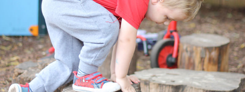 physical development in the garden